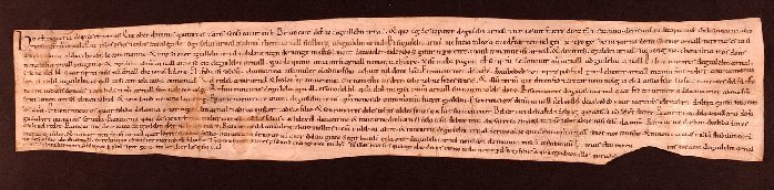 manuscrit emblemàtic